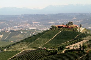 Imbibe: 'Beauty and the Barolo' feature