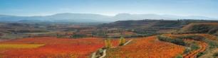 Murrieta's Triple Success at Wines From Spain