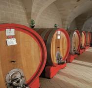 The cellar 2