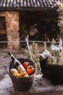 Amarone in the Autumn