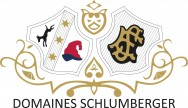 Domaines Schlumberger Logo
