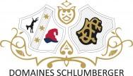 Domaines Schlumberger Logo