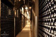 Cellar - Bottles