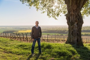 Domaine Faiveley Harvest Roundup