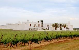 MMD adds a Puglia Estate to its Italian portfolio