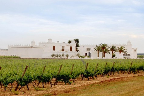 MMD adds a Puglia Estate to its Italian portfolio