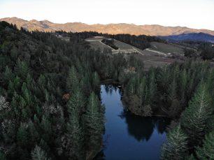 Diamond Creek Joins the MMD Portfolio